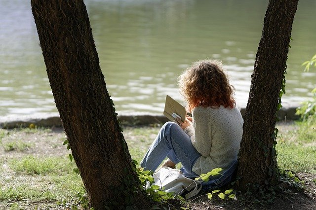 novels photo